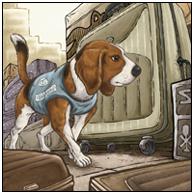 安全卫士·缉毒犬